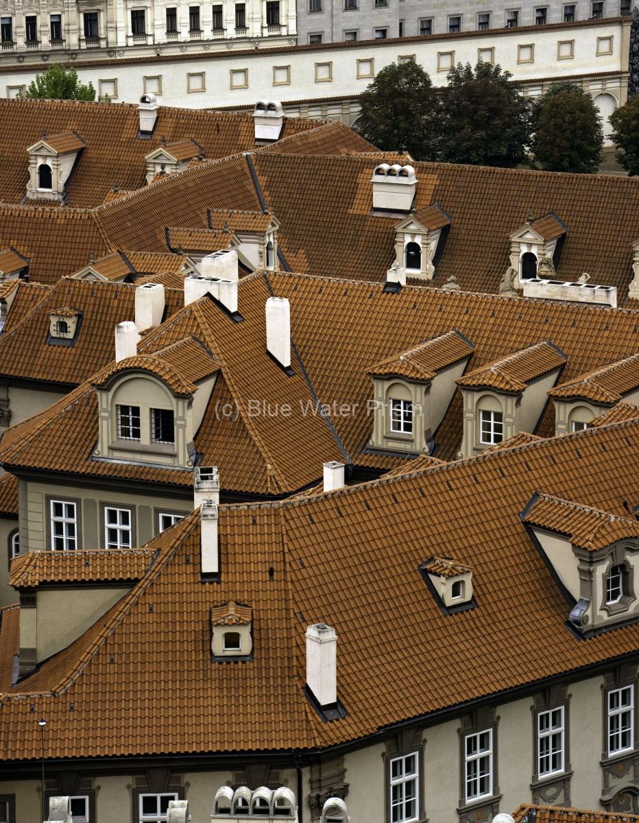 City roof scene