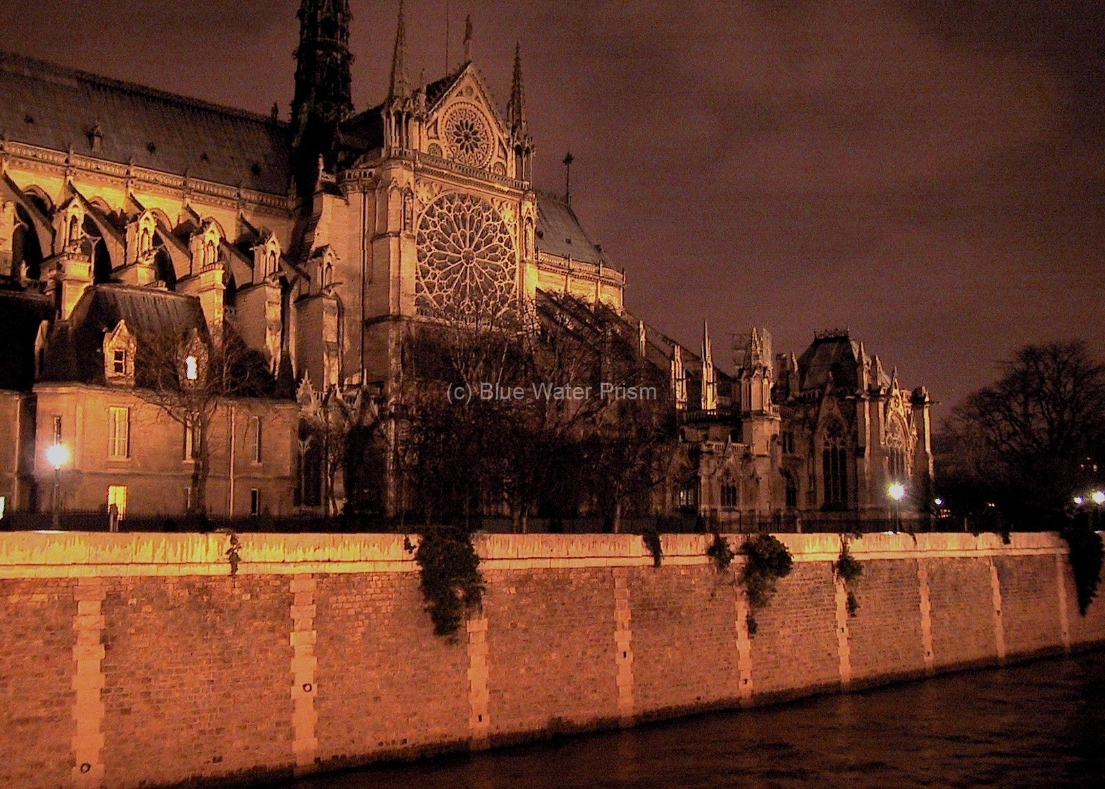 notre dame at night1