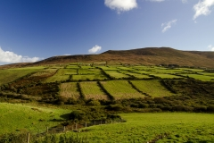 Dingle Peninsula3
