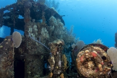Diving on the wreck of the Doc Poulson in Grand Cayman