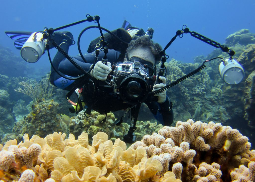 Jay Pomerantz - Photographer at Blue Water Prism taking photo of life around the coral reef.